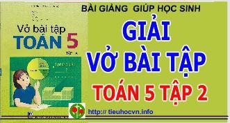 Bai-tgiang-vo-bai-tap-Mon-Toan-Lop-5