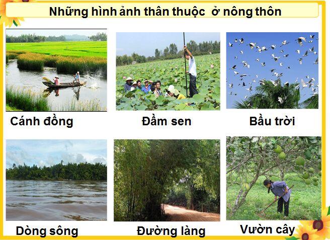 Tap-lam-van-3-trang-138-Tuan-16-Keo-cay-lua-len-Ke-ve-Nong-thong-thanh-thi